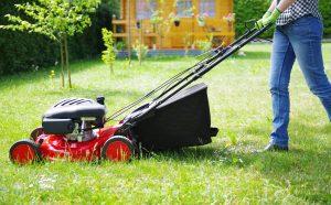 tondeuse pour grande pelouse