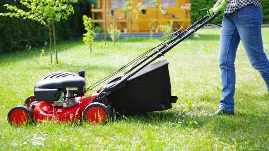 Quelle tondeuse choisir pour une grande pelouse ?